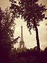 France, Paris, Eiffel Tower - MYF001031