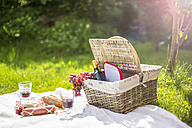 Germany, Bavaria, Picnic on grass with wine, grapes, sausage, cheese and braed - SARF001920