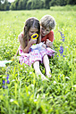 Brother and sister sitting on a meadow with insect can and magnifying glass - SARF001925