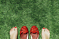 Barefoot women with nails painted red next to a pair of red shoes, on the green grass - GEMF000247