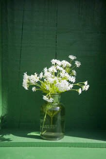 Old glass bottle with blossoming woodruff - GIS000124