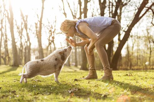 Woman taming piglet in park - TAM000197
