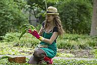 Young woman harvesting kohlrabi - SGF001716