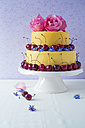 Fancy cake coated with fondant decorated with cherries, rose and borage blossoms - MYF001059