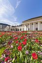Germany, Baden-Wuerttemberg, Baden-Baden, Kurhaus, tulip bed - WDF003154