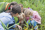 Germany, Children collecting worms in nature - MJF001532