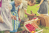 Germany, Saxony, little girls in traditonal clothes with their harvest  on a meadow - MJF001603