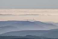 Germany, Saxony-Anhalt, Harz National Park, Coniferous forest, atmospheric inversion - PVCF000432