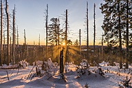 Germany, Saxony-Anhalt, Harz National Park, Brocken mountain in winter, sunset - PVCF000436