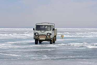 Russia, Lake Baikal, pickup truck and Siberian Husky on frozen lake - GNF001357