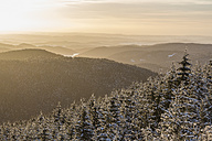 Germany, Saxony-Anhalt, Harz National Park, Landscape in winter at sunset - PVCF000456