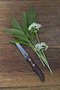 Fresh ramson, blossoms and kitchen knife on wood - CRF002697