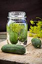 Preserving jar of gherkins - LVF003656