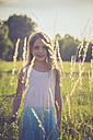 Little girl standing on a meadow at backlight - SARF002024