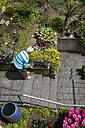 Senior woman working in the garden - MIDF000507
