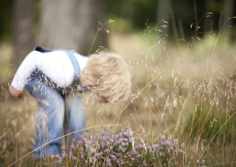 Germany, little boy discovering nature - MFRF000239