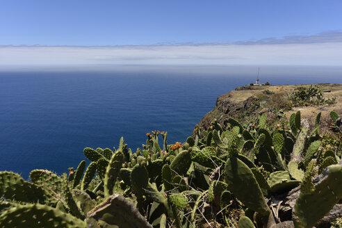 Portugal, Madeira, View to coast - FDF000097