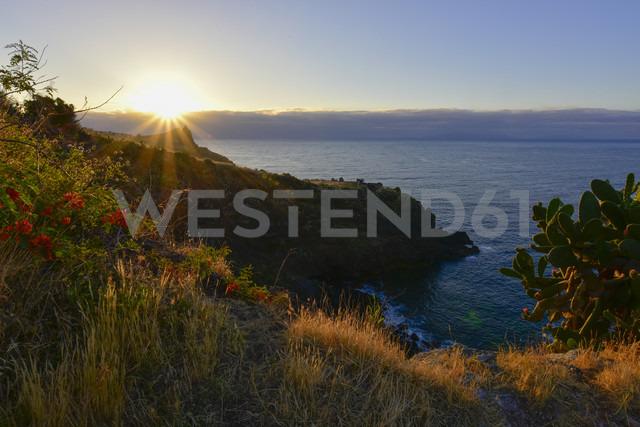Portugal, Madeira, Coast at sunset - FDF000100