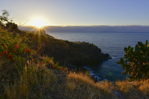 Portugal, Madeira, Coast at sunset - FDF000100