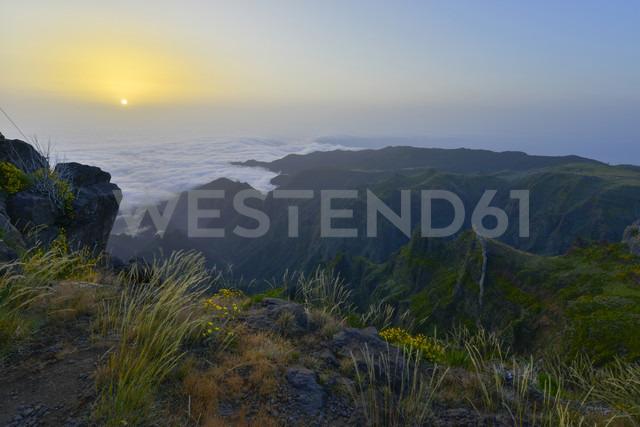 Portugal, Madeira, Sunrise - FDF000116