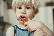 Portrait of little boy brushing his teeth with an electric toothbrush - MFF001686