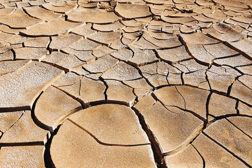 South America, Chile, Dry cracked earth in the Atacama desert - GEMF000252