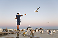 Germany, St Peter-Ording, young man standing on wooden fence feeding seagulls - MEMF000821