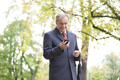 Smiling businessman in a park looking at cell phone - WESTF021345