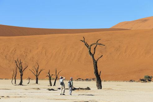 Namibia, Namib Naukluft, Namib Desert, tourists photographing dead acacias on clay pan - FO008159