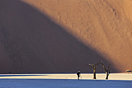 Namibia, Namib Naukluft, Namib Desert, man photographing dead acacias on clay pan - FOF008161