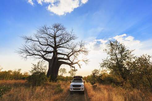 Zimbabwe, Masvingo, Gonarezhou National Park, off-road vehicle parking under a baobab - FOF008223