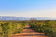 Southern Africa, Zimbabwe, dirt track through landscape - FOF008257