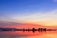 Zimbabwe, Urungwe District, Mana Pools National Park, sunset at Zambezi - FOF008249
