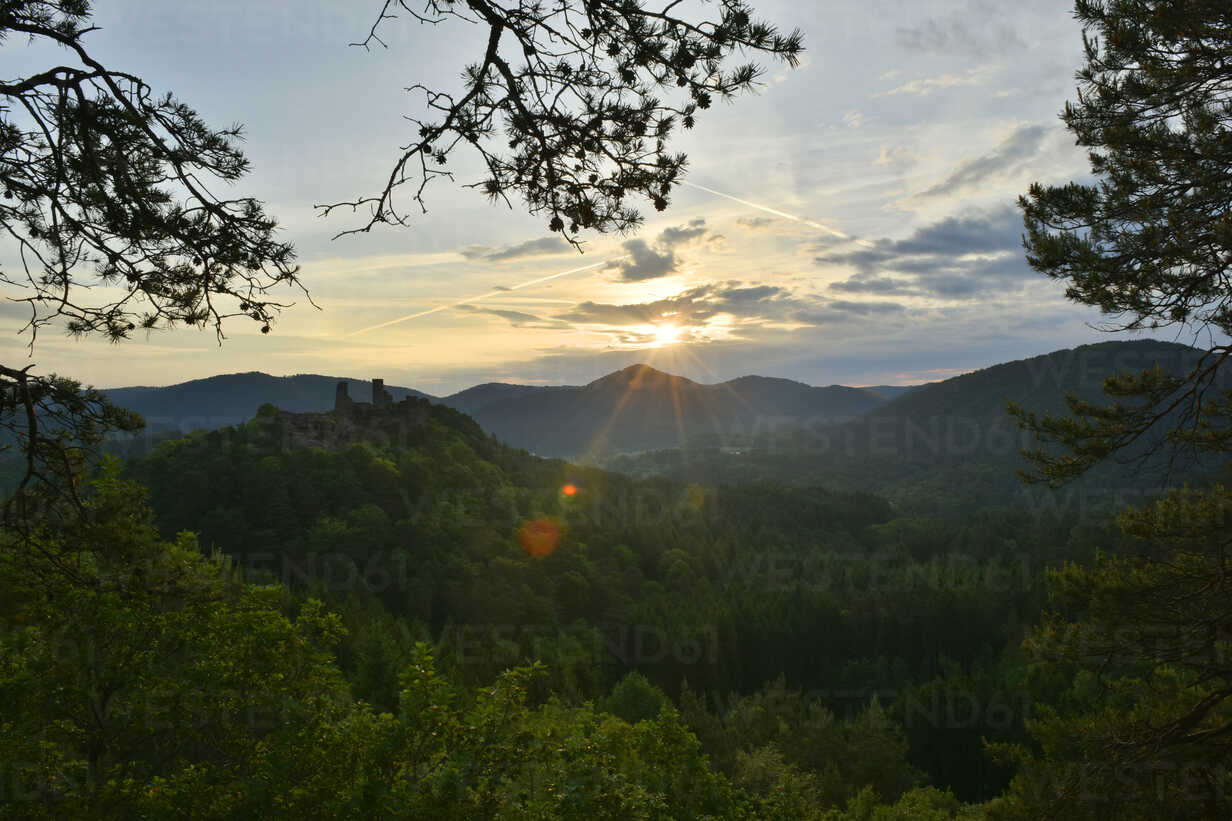 Germany, View to Palatinate Forest against the sun - FDF000127 - Kontrastlicht/Westend61