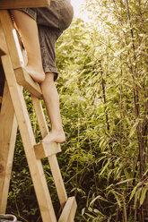 Legs of boy climbing up a wooden ladder in a bamboo garden - MFF001897