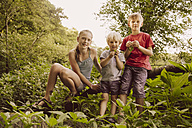 Portrait of three smiling children in nature - MFF001927