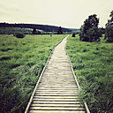 Belgium, High Fens, wooden boardwalk - GWF004318