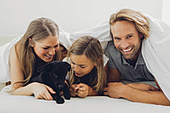 Happy father, mother and daughter with puppy in bed - CHAF000974