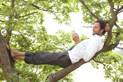 Germany, relaxed businessman lying in tree looking at cell phone - MFRF000263