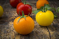 Different tomatoes on wood - LVF003710