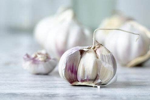 Garlic bulb - ODF001142