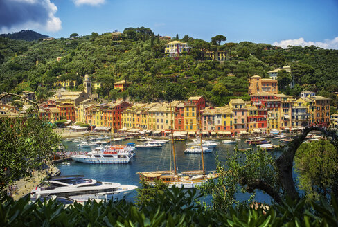 Italy, Liguria, Portofino, boats and row of houses - DIKF000141