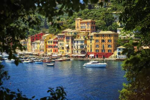 Italy, Liguria, Portofino, boats and row of houses - DIKF000142