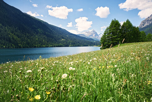 Switzerland, Grisons, Sufers, Sufnersee and flower meadow - DIKF000164