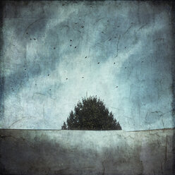 Treetop and roof with flying birds, textured effect - DWIF000549