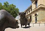 Germany, Frankfurt, bull and bear bronze sculptures at Stock Exchange - SIEF006667