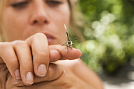 Butterfly on woman's hand - TCF004773