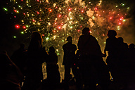 People watching fireworks - TC004733