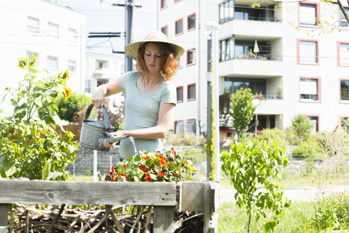 Young woman gardening, urban gardening, raised bed, watering - SGF001824