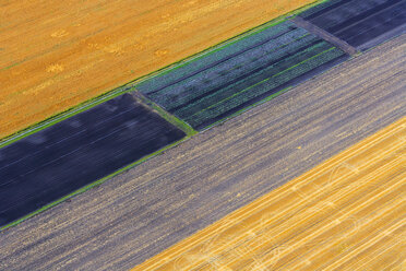 Germany, Bavaria, View of fields, aerial view - PEDF000109